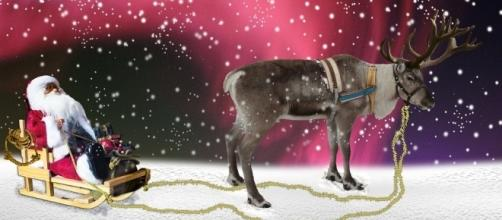 Children love making magic reindeer food on Christmas Eve - pixabay.com