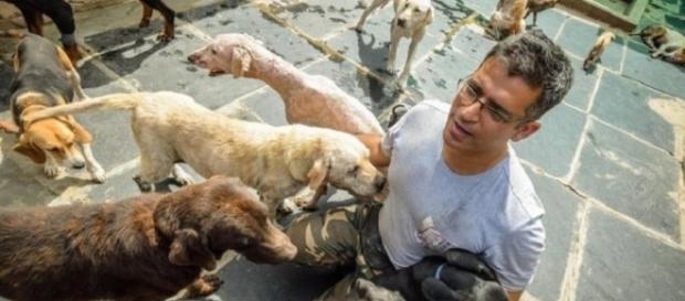 Rakesh resgata todo cão que encontra na rua (Foto: Asif Saud)