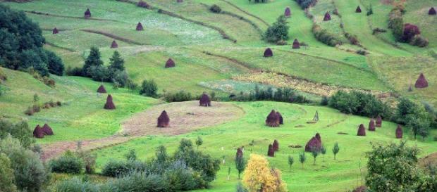 Bucovina a fost leagănul familiei Hurmuzachi