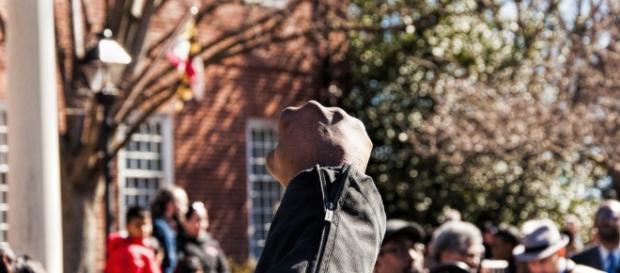 Culture is Upstream from Politics: 50 Responses | The Washington ... - washingtoninst.org