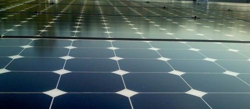 Soja por paineis fotovoltaicos: uma saída para a economia
