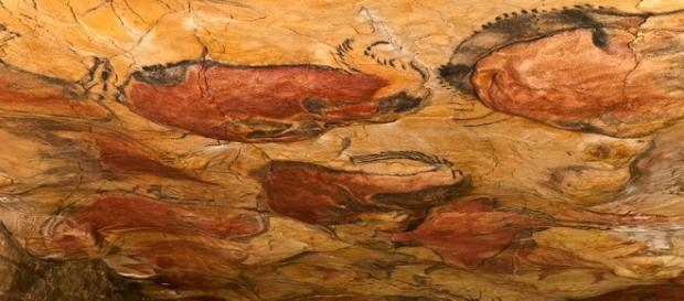 Bisontes de la cueva de Altamira.