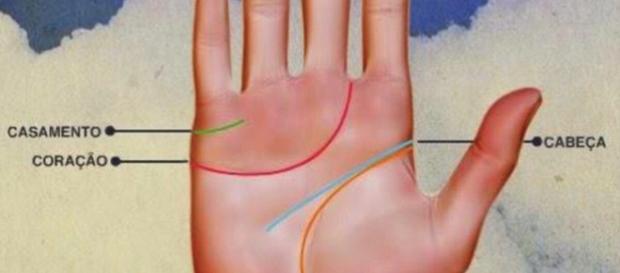 As quatro linhas da mão podem indicar muito sobre seu futuro