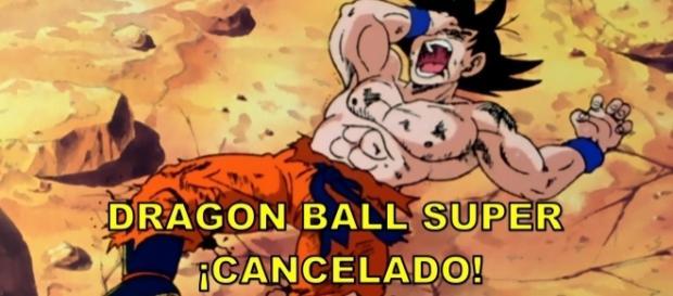Goku no puede creer la noticia.