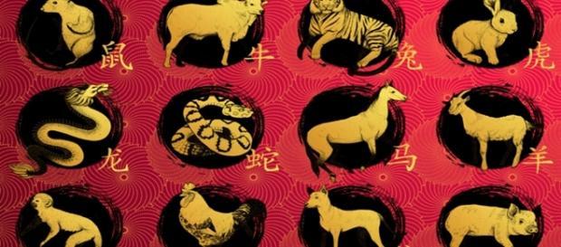 Previsões para 2017 de acordo com a astrologia chinesa.