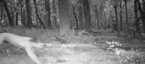 Jovem de 21 anos percorreu mais de 24 km pela floresta (CEN)