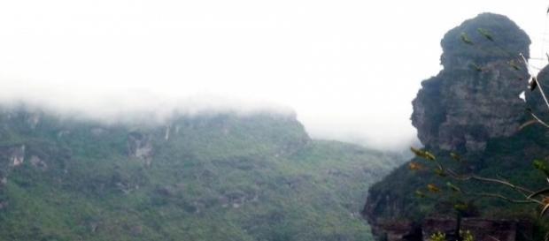 """Morro do Macaco, trilha da Cachoeira da Fumaça """"por Baixo"""". Foto: Manu Magalhães."""