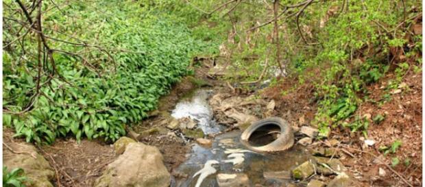 Riacho onde uma das crianças foi encontrada