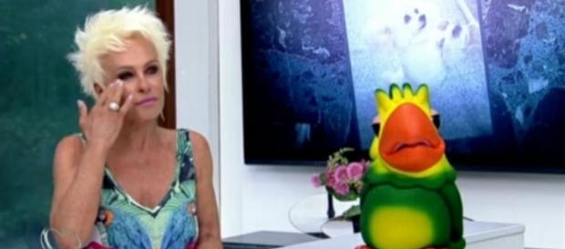 Para enxugar o orçamento, Globo pode cortar Ana Maria Braga de sua programação