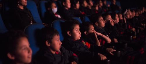 Colegios al Cine, iniciativa de formación de públicos desde las ... - cinevistablog.com