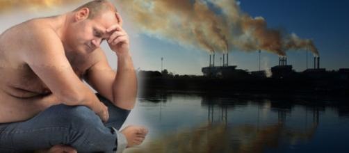 La contaminación afecta al sistema endocrino humano de diferentes formas