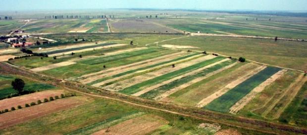 Circa 40 % din terenul agricol al României se află în posesia străinilor