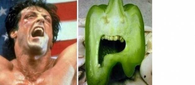 Grande semelhança entre um pimentão e Rocky Balboa.
