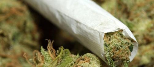 Napoli: arrestati con 3,5 kg di Marijuana fanno ridere i Carabinieri.