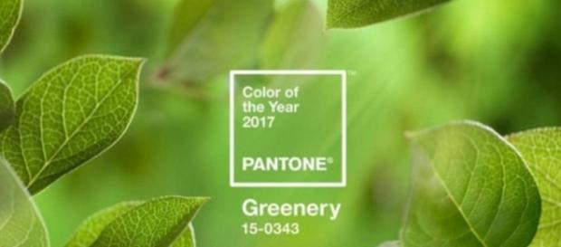 O 'Verde Folhagem' nos lembra o início da primavera e traz uma mensagem de renovação