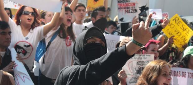 Antitaurinos exigieron abolición de la tauromaquia
