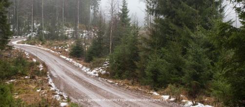 estado de los caminos en Suecia