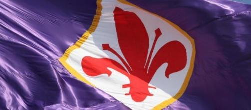 Il giglio rosso, simbolo della Fiorentina