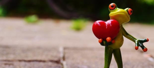 El amor no sólo se da en San Valentín...