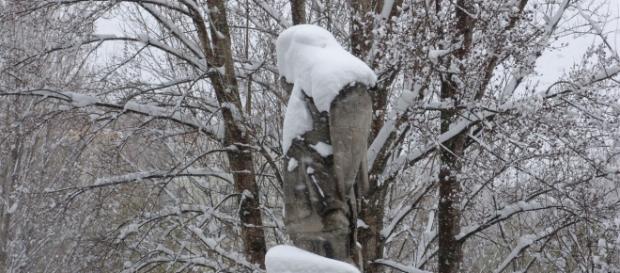 Previsión de nevadas en cotas bajas