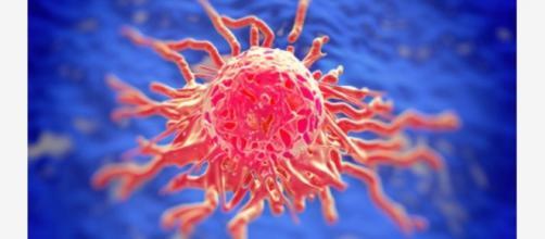 Biopsia-pixels. Detección de tumor célula a célula