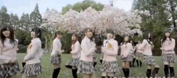 Sakura no Ki ni Narô completa 5 anos.