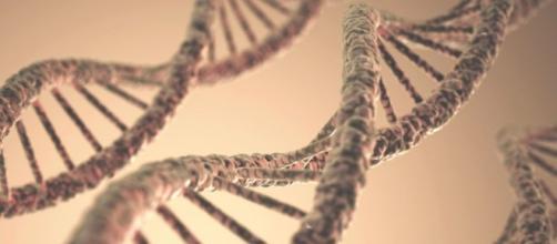 immagine La Repubblica. DNA Scoperte.