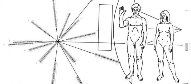 """Dibujo incluido en la sonda """"Pioneer 10"""""""