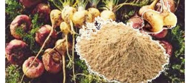No Brasil, a maca é encontrada em pó e em cápsula