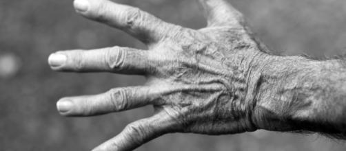 Pensioni e sindacati, ultimi commenti al 2/02