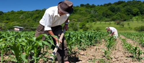 Trabalhadores rurais no Brasil