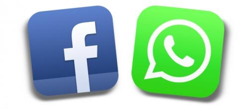 Whatsapp a lavoro per migliorare il servizio