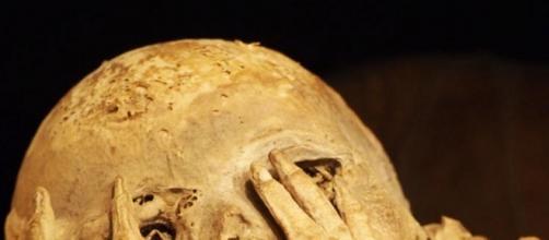 Momias: la llave del conocimiento Inca
