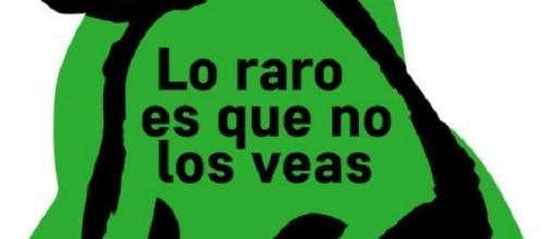 """Imagen de la campaña """"Soy un perro verde"""""""