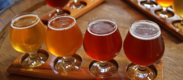 Fonte pública de cerveja será inaugurada em Zalec
