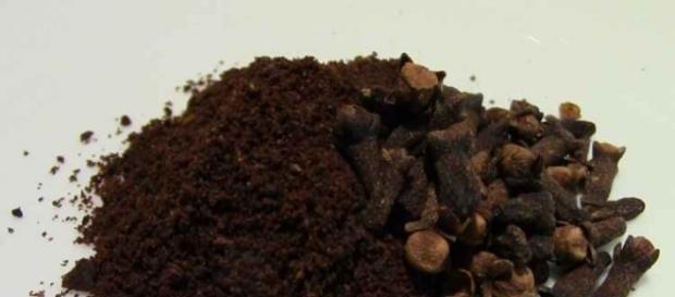 Segundo a bióloga o óleo do cravo afasta o inseto
