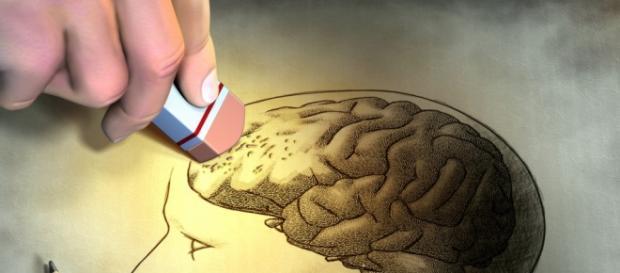 A neurociência relaciona-se com outras disciplinas