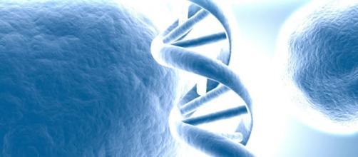 Biotech Space - Rede Social de Biotecnologia