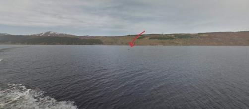 Posible vista de Nessie en el lago