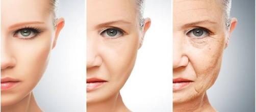 un enzima contro l'invecchiamento della pelle
