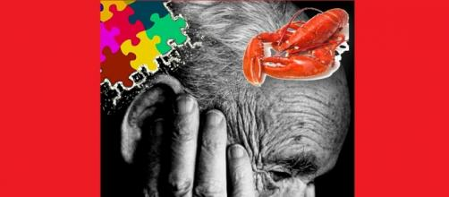 El marisco prevendría el Alzheimer según revista