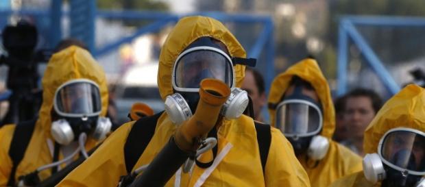 Eliminação do mosquito responsável pelo vírus Zika