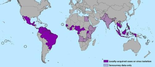 Principali aree di diffusione del virus