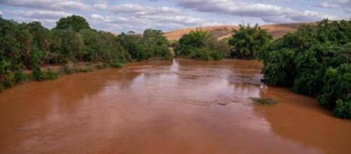"""Juiz declarou que a água do Rio Doce """"é potável"""""""