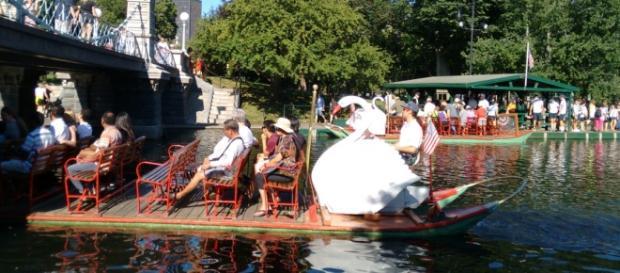 Cisne de pedalinho em lago artificial em Boston.