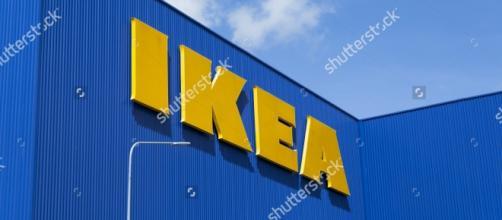 IKEA ricerca giovani laureati e diplomati