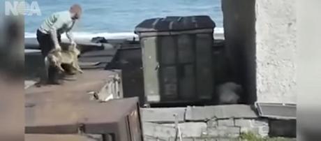 Uno screenshot del video che rende tutto lampante