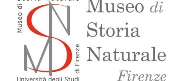 Concorso Museo di Storia Naturale 2016