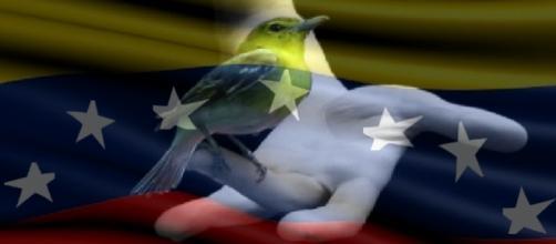 Venezuela: un país que merece ser liberado.
