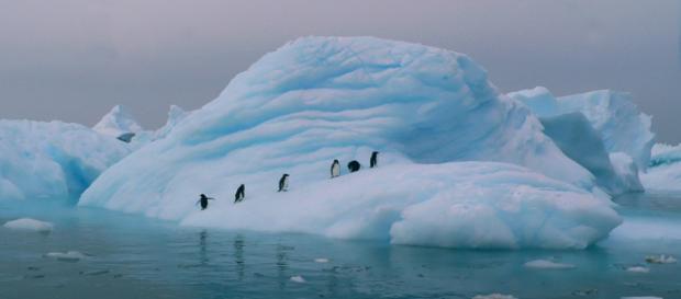 Antártica está entre o top 10 mais frios do mundo